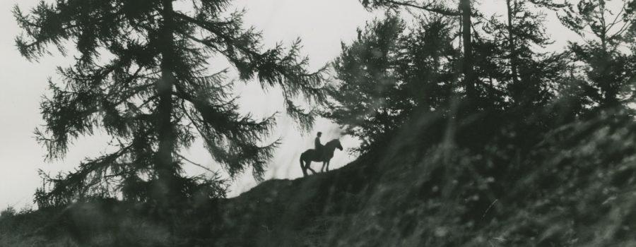 W. KarnerMotiv: Reiter, Pferd